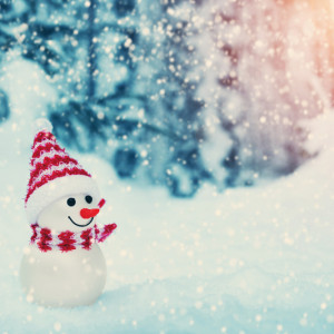 冬の寒さが楽しみになる!かわいいパングッズで暖まろう